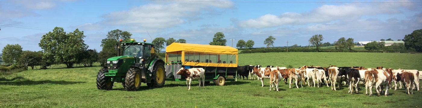 Farmer Barnes Dairy
