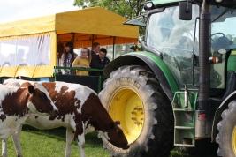 School visit Trailer Ride with cows
